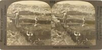 Irlanda Agricoltura Vita Rurale Torba, Foto Stereo Vintage Analogica PL62L12