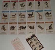 Jeu des 7 familles Les mammifères planches Deyrolle