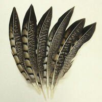 Wholesale 10-100 PCS Natural color Pheasant Tail Feathers 10-40cm/4-16inches