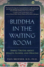 BUDDHA IN THE WAITING ROOM Simple Truths Health Illness Healing FREE SHIPPING!