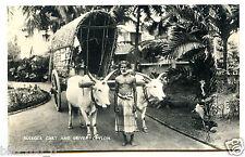 CARTE-PHOTO.INDE .INDIA . Sri Lanka .bullock cart and driver  .Ceylon.attelage