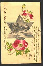 David Star Judaica Original ca1900 postcard greetings flower poppy