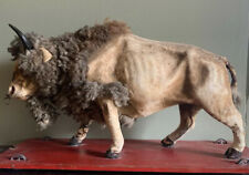 ANTIQUE GERMAN or AMERICAN BISON BULL PULL TOY ON WHEELS LEATHER FUR
