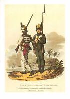 Wellingtons Esercito Militare Uniforme Stampa ~ York Luce Fanteria Volontari