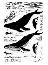NEW Hero Arts Clear Stamps Color Colour Layering Blue Whale