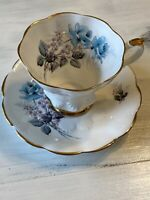 Royal Ardalt Bone China Made in England