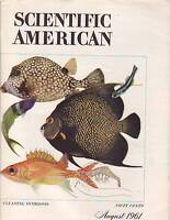 1961 Scientific American August-Hacilar;Enzymes;Polymer