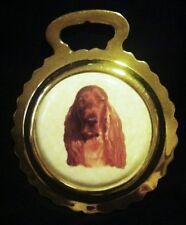 DOG IRISH SETTER NEW Ceramic Horse Brass IRISH SETTER Dog Lover! WOW YOUR WALLS!