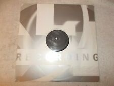 Vinyl 12 inch Record Single Nu-Birth Anytime
