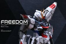 Gundam Infinite Dimension ZGMF-X10A 2.0 FREEDOM MG GK Conversion Kits 1:100
