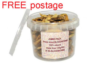 2x Dynabait freezed dry BLOOD worms - bulk =  more then 8x satchel of 5gr