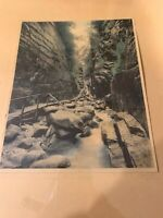 Charles Sawyer Hand Colored Photo Flume Falls Franconia Notch NH Very Old.