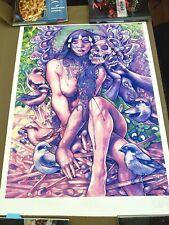 John Dyer Baizley Roadburn Festival signed poster art print Baroness