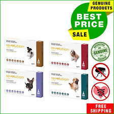 Revolution Flea and Heartworm treatment for dogs 3 Pipettes All Sizes AU Shop