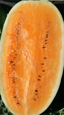 SANDIA NARANJA (orange   watermelon ) 30 semillas seeds