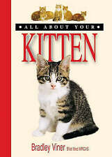 All About Your - Kitten