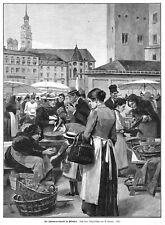 München,Viktualienmarkt. Pilze, Schwammerln,, Original-Holzstich von ca. 1890
