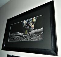 Chengxiang Shang Journey In The Clouds No. 8 BNG Bottleneck Edition Mint Framed