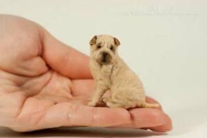 OOAK  Handmade ~ Shar Pei Dog ~ Miniature Dollhouse Sculpture