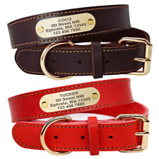 Leather Dog Collar with Custom Personalized Tags for Medium Large Dogs Labrador
