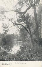 Homer NY * On the Tioughnioga ca. 1910 * Cortland Co.