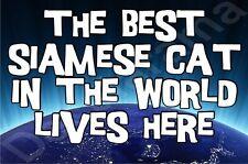 The Best Siamese Cat In The World Lives Here Fridge Magnet Gift/Present Kitten