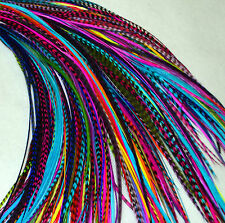 "Real Feather Hair Extensions 10 Mixed Colours 7-11"" feathers UK Seller"