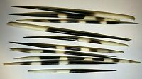 South African Porcupine Quills 10 Pieces/Lot Thick and Fat ~6.5 Inches