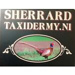 Sherrard's Taxidermy