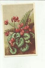 137892 stupenda cartolina artistica illustrata da bevilacqua