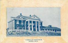 Howell Michigan Tubercular Sanatorium 1909 Postcard 6238