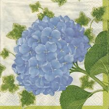English Flower paper Napkins Caspari Hydrangea Blue