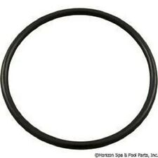 Genuine Hayward sx200z3 Microclear Proseries bulkhead union O-Ring  (2) o-rings