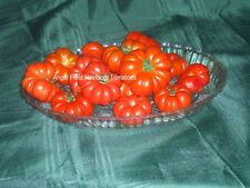 """New listing 20 Costoluto Genovese """"Ribbed of Italy"""" Red Heirloom Tomato Seeds Special"""