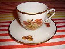 Antique Hutschenreuther Hohenberg Cup & Saucer Porcelain Olivia Fruit Design GR