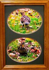 Ruffed Grouse Photo Study Ducks Unlimited Edition Giclee Archival Reproduction