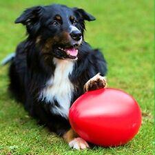 PROCYON Spielei Spielball Spiel-Ei Treibball Ball Running Egg Crazy - 18 cm