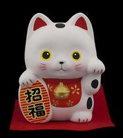 Gran Hucha Gato Japonés 13cm Cerámica Fabricado en Japón Maneki Neko 40656