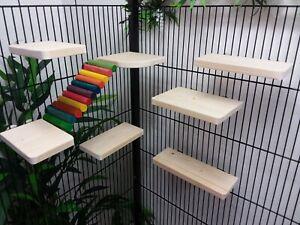 Mixed 8 Pack pine Shelves/Ledges/ramp Hamster,Degu,Rat, Chipmunk Cage