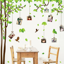 Photo Frame Memory Tree Wall decal Removable Sticker decor Family Home art wn