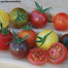 Tomato Rainbow Cherry Mix  40 Varieties ~ Colorful ~ Gourmet ~ Sweet ~ 30+ Seeds