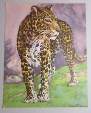 LEOPARD CAT AFRICAN WILDLIFE AFRICA VINTAGE COLOR ART PRINT by DIANA THORNE 1937