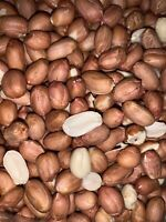Raw, All Natural Red Skin Peanuts - select size