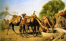 Cammelli al Attraverso Deserto di Gerome Stampa Su Tela/Fine Art Immagine Poster