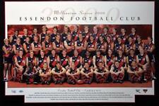 AFL Essendon Bombers 2000 Team Poster