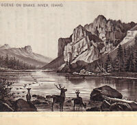 Idaho 1890's Snake River Elk Deer Photo-Lith Jersey Coffee Victorian Trade Card