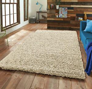 Area Rug Shaggy Rug Anti Slip Fluffy Rug Soft Mat Living Room office Rugs Carpet