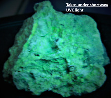 RARE Uranophane, and possible Gummite on Pitchblende, check source, uranium ore
