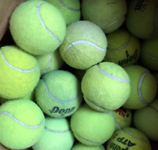 12 Used Tennis Balls mixed brands.