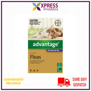 Advantage Fleas Treatment and prevention for Cats Over 4 kgs NEW STOCK XPRESS